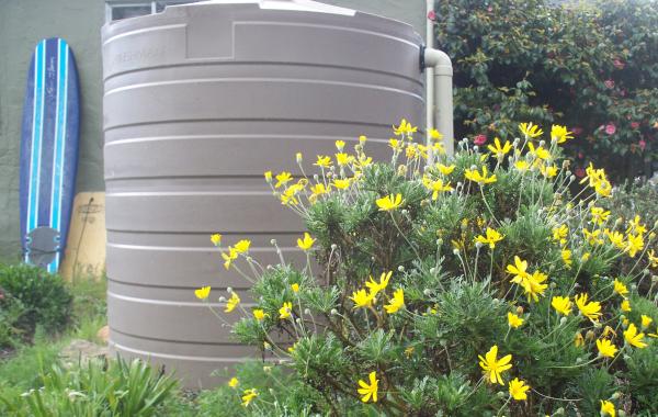 Rainwater Harvesting in Cisterns