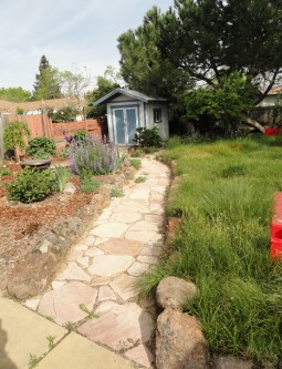 5. Lose Your Non-Functional Lawn
