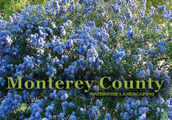 Water Wise Gardening in Monterey County