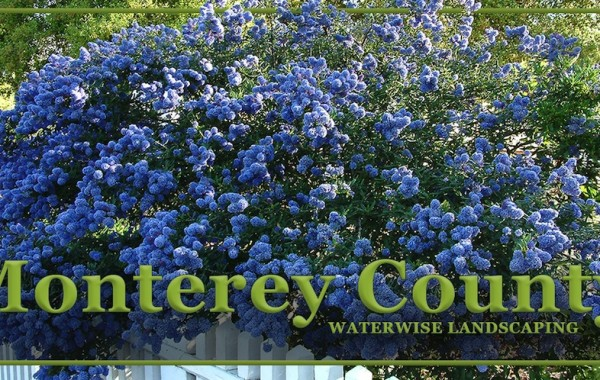 Water Wise Gardening in Monterey County