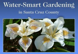 Waterwise Gardening in Santa Cruz County