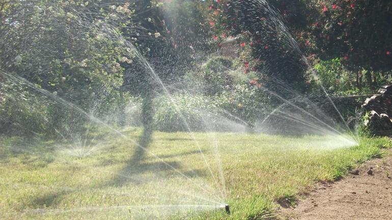 8. Remove Sprinklers near Sidewalks and Driveways
