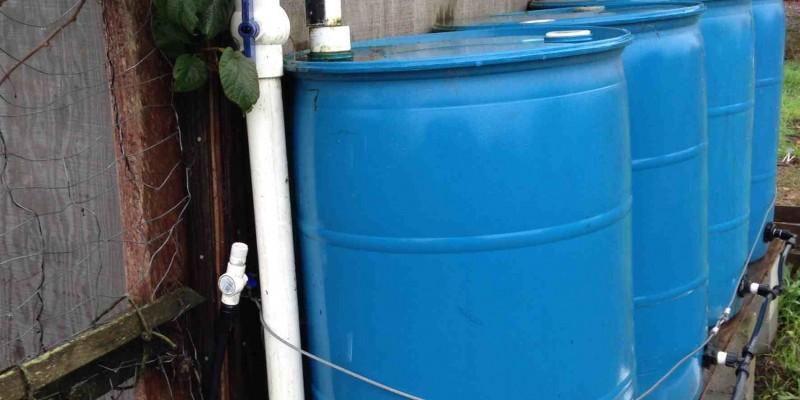 55-gal-rainwater-harvesting1
