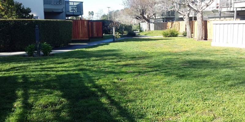 Seacliff Garden Apts. Pre-Construction