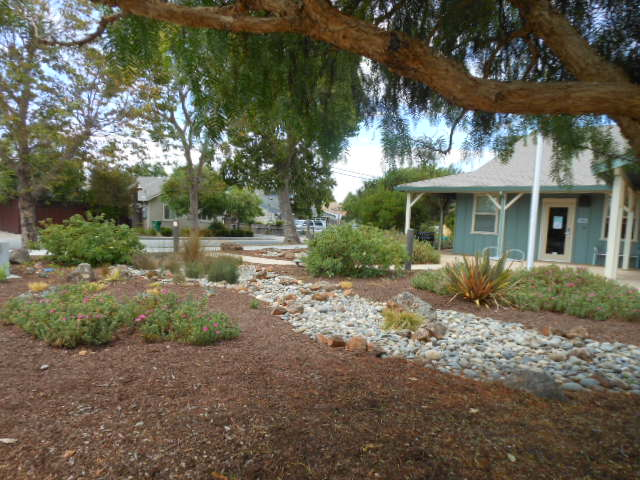 Dry Creek Bed at Santa Cruz County Animal Shelter