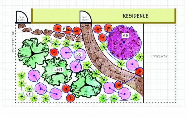 Redwood Forest Landscape Design