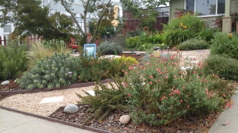 Watsonville Garden