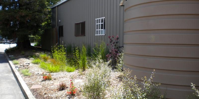 Tank-and-rain-garden