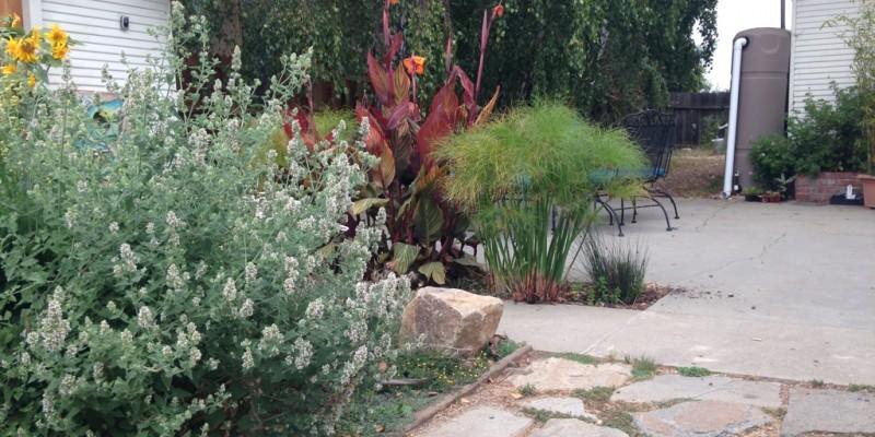 permeable-patio