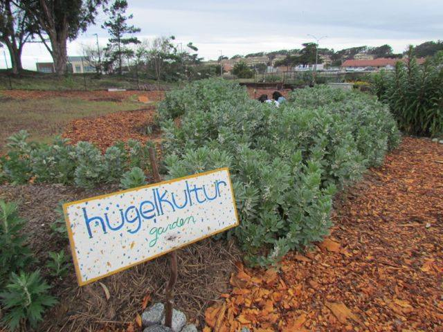 Hugelkulture-garden