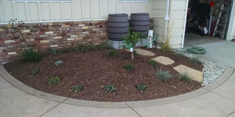 rain-barrels-part-2