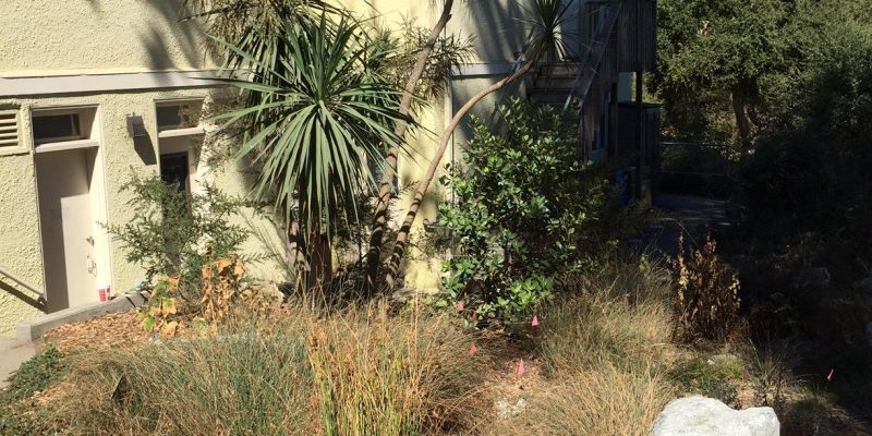Side view of Landscape